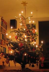Juletræ - varme farver
