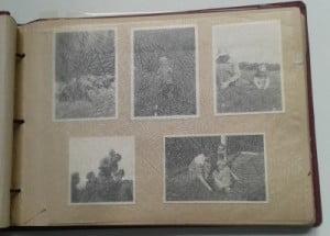 Her er fem billeder, som er limet ind.
